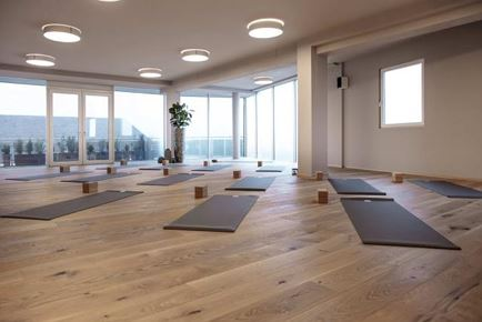 Elemental Vinyasa Immersion - Modul I - Erde